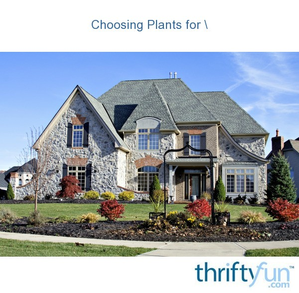 Choosing Plants For Curb Appeal Thriftyfun