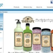Screen shot of Village Naturals Therapy website.