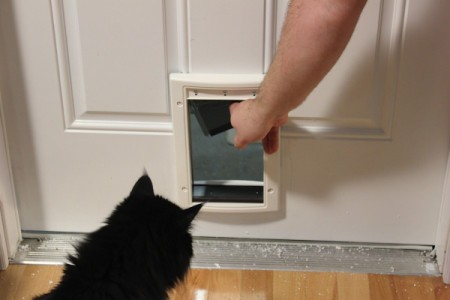 Installing a cat door thriftyfun - Interior door with pet door installed ...