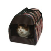 Cat in a cat carrier.