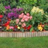 Ornamental Border