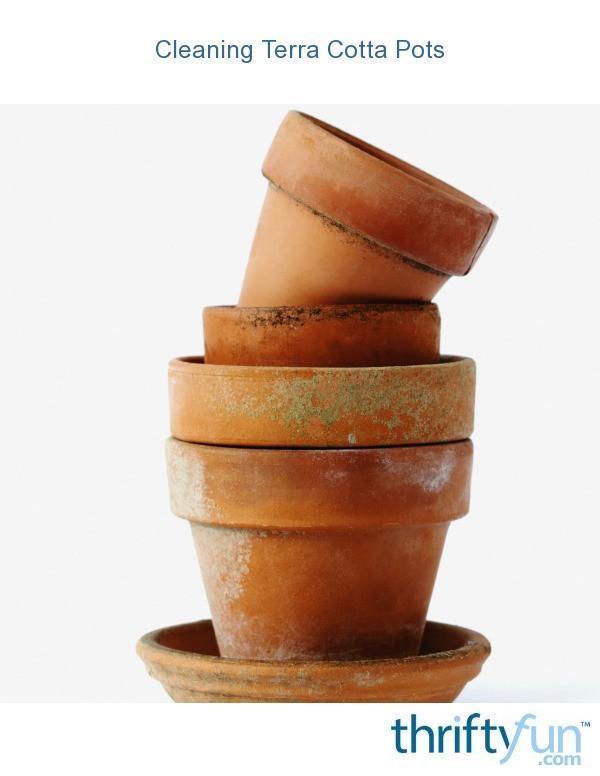 Cleaning Terra Cotta Pots Thriftyfun