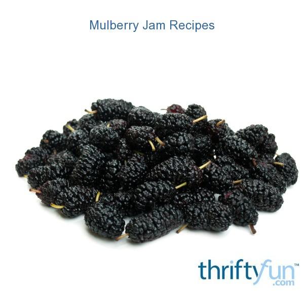 Mulberry Jam Recipes | ThriftyFun