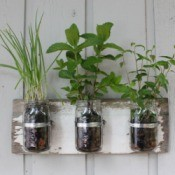 canning jars mounted on rustic board