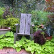 Adding Character and Charm to Your Yard & Garden