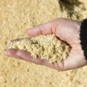 A hand holding sawdust.