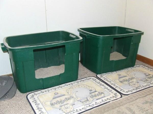 Multi Cat Litter Box Ideas
