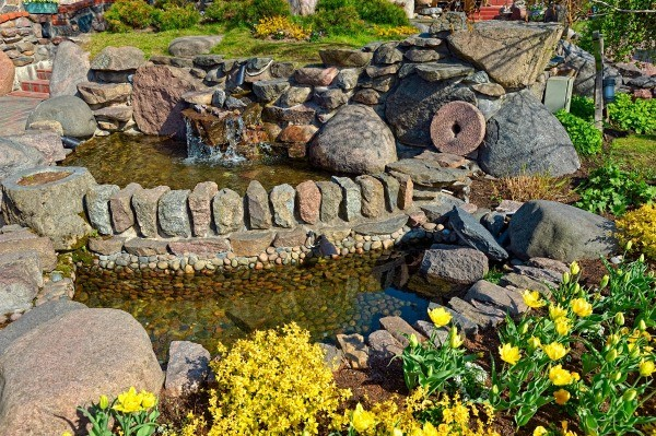 Controlling grass in a backyard pond thriftyfun for Garden pond questions