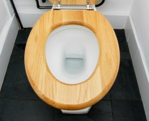 Cleaning A Wood Toilet Seat ThriftyFun