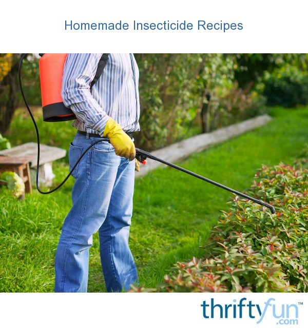 Homemade Insecticide Recipes Thriftyfun