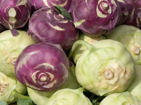 Green and purple kohlrabi.