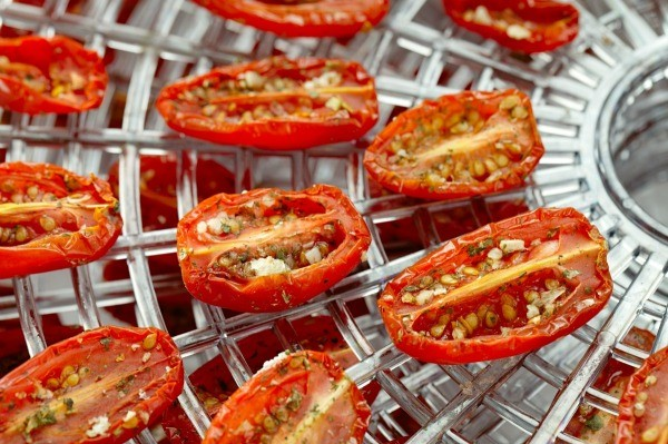 Dried tomatoes in a dehydrator tray.