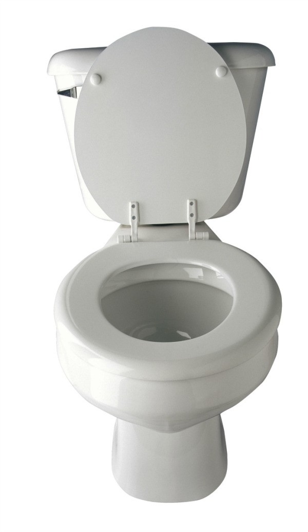 preventing clogged toilets thriftyfun