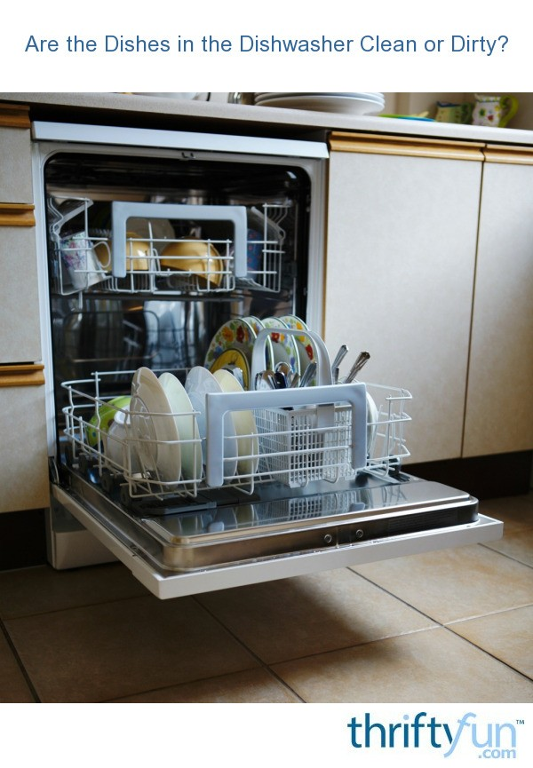 Dishes In Dishwasher ~ Are the dishes in dishwasher clean or dirty thriftyfun