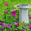 A solar light in a garden.