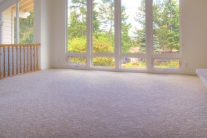 A room with light colored carpet.