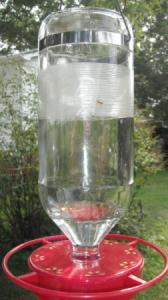 Keeping Ants out of Hummingbird Feeder - A feeder with tape on it.