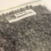 blueberries in bag 2