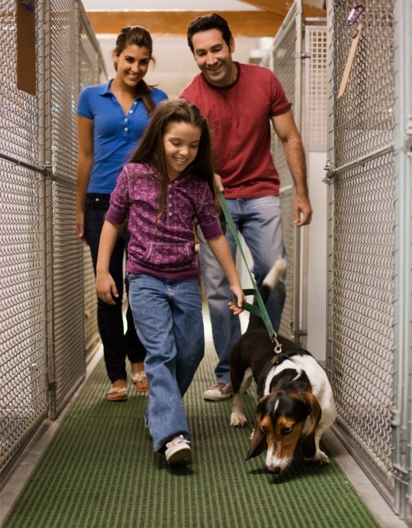 A family at an animal shelter.