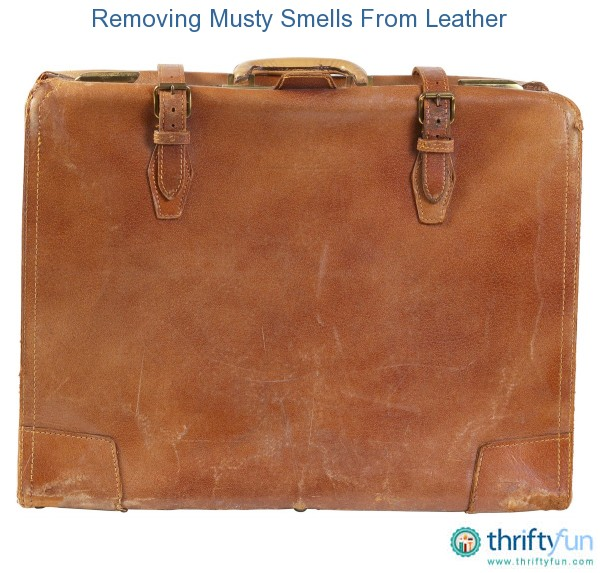 Removing Musty Smells From Leather Thriftyfun