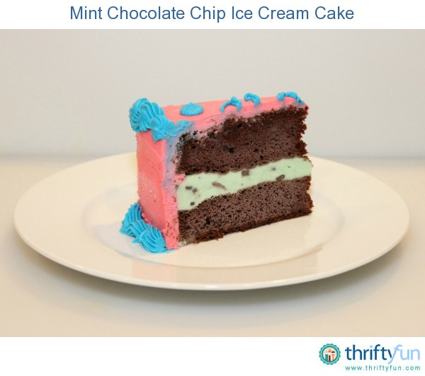 Mint Chocolate Chip Ice Cream Cake | ThriftyFun