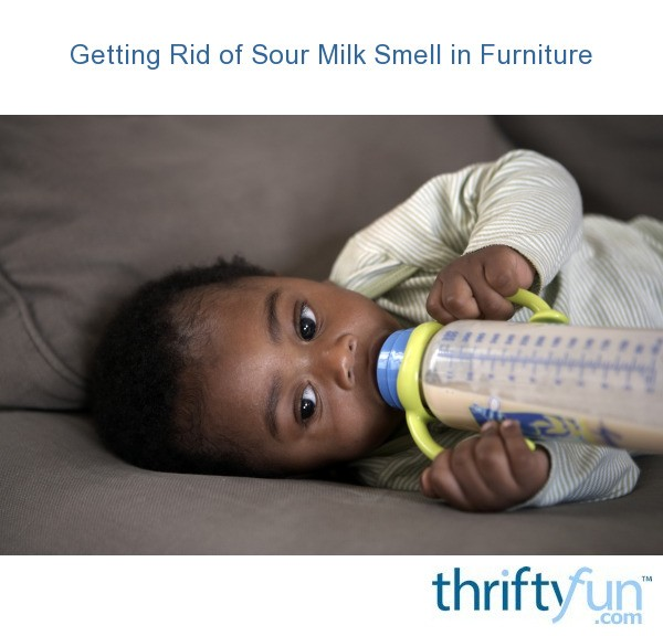 Getting rid of sour milk smell in furniture thriftyfun for Get rid of furniture