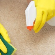 Photo of someone cleaning a paint thinner stain from carpet.