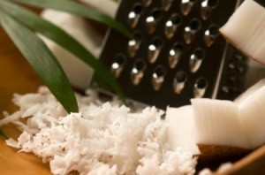 A photo of shredded coconut, one of the ingredients in coconut bars.