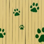 Paw prints painted on a fence.