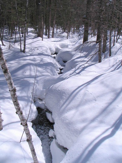 Stream in snow.