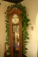 Let them rest, vine growing over a grandfather clock.