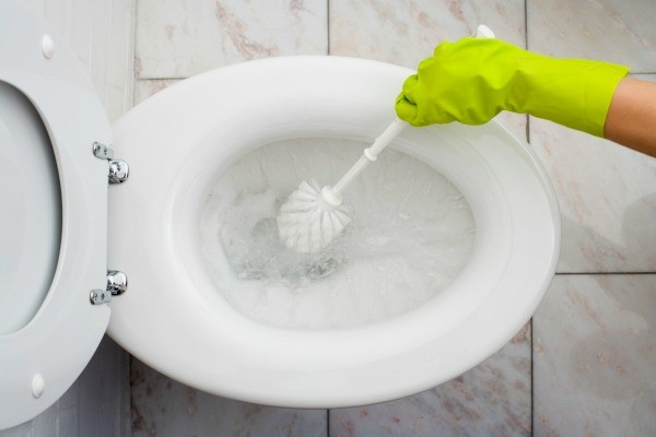 Cleaning a white toilet.