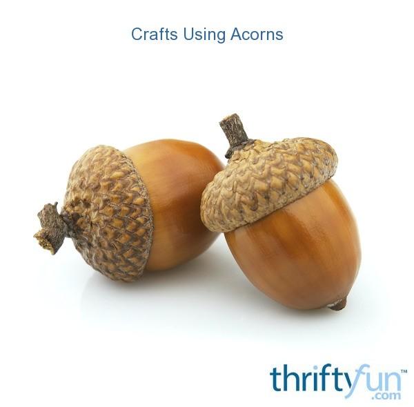 Crafts Using Acorns Thriftyfun