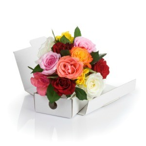 Shipped Flowers