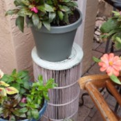 Used Pool Filter as a Garden Plant Stand - flowerpot on top of filter