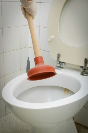 Plunging Clogged Toilet