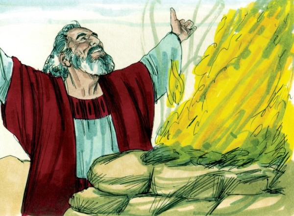 A drawing of the biblical figure noah.