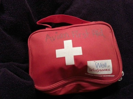 labeled emergency bag
