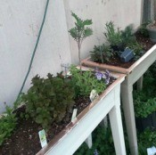copper tape on container gardens