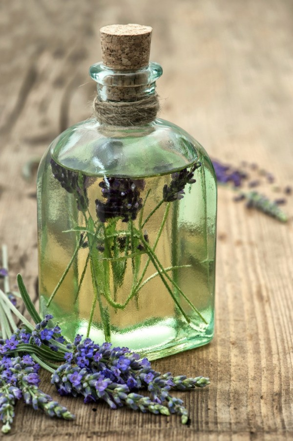 foto How to Preserve Your Herbs from a Home Herb Garden
