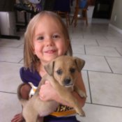 Little girl holding a small brown puppy.