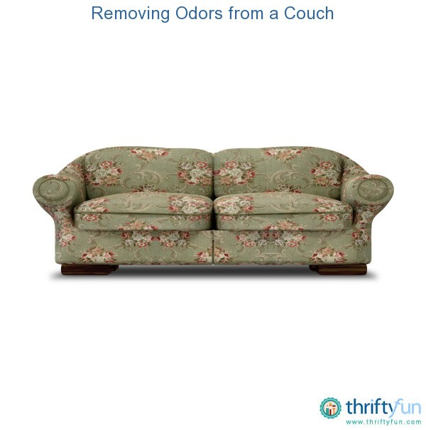 how to clean a smelly couch