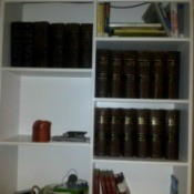 volumes on bookshelves