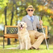Blind Man With Dog