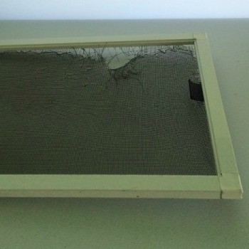 Damaged Window Screen