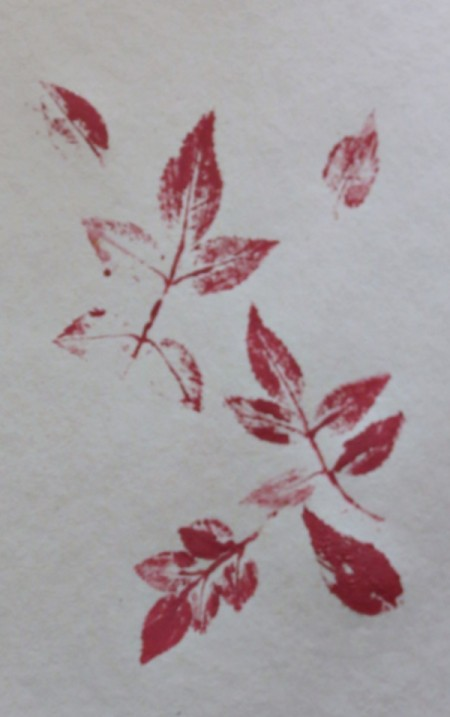 rose leaf prints