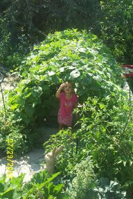 Garden Tunnel for Kids - distant shot of boy inside the tunnel