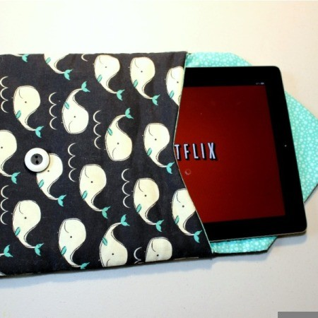 Padded iPad Pouch