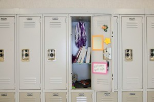 Uses for Locker Organizers