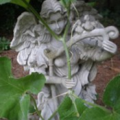 full view of angel statue